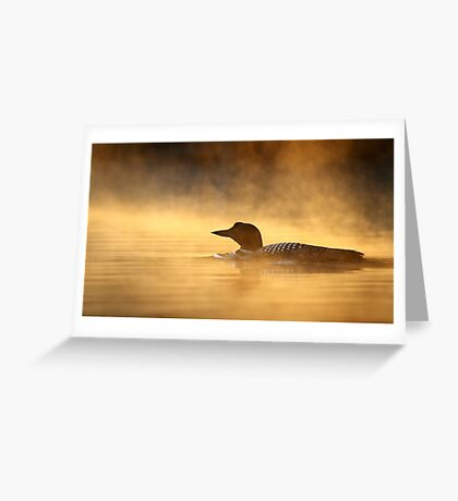 Into the Mist - Common Loon Greeting Card