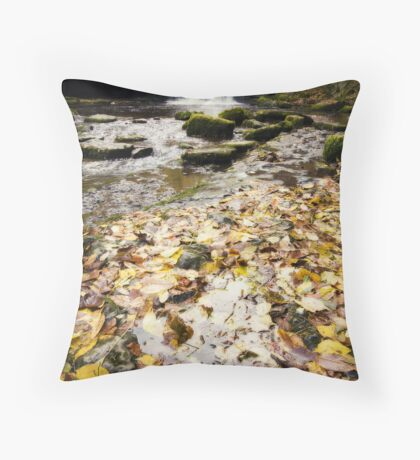 West Burton Waterfall Throw Pillow