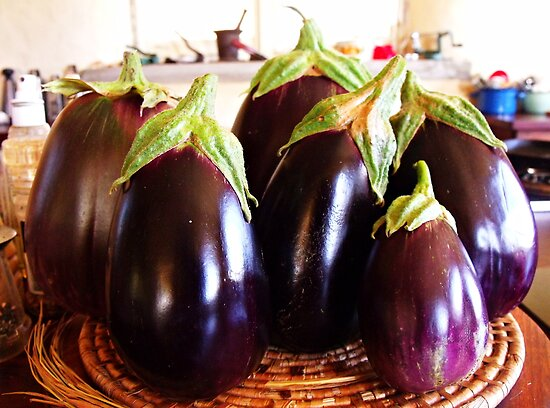 La Famille de L'Aubergine decided it was high time they had a family photo... by LouJay