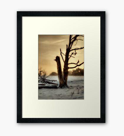 Wintery Times Framed Print