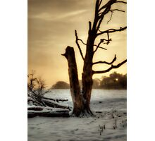 Wintery Times Photographic Print