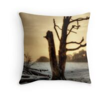 Wintery Times Throw Pillow