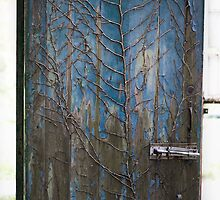 Weathered Door with Ivy by Alex Wagner