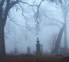 Cemetery Study 2 by Mary Ann Reilly