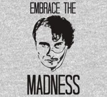 Embrace the Madness - version III by FandomizedRose