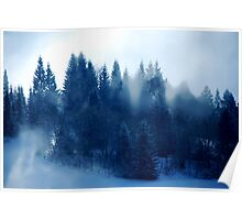 Snowflakes are falling..........Snowflakes, Sun and Fog at the same time..... Poster