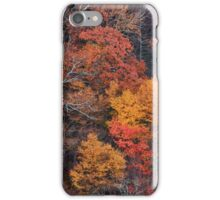 Hills Ablaze iPhone Case/Skin
