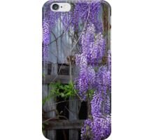 Wisteria on Barn iPhone Case/Skin