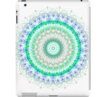 Spring Fresh mandala iPad Case/Skin