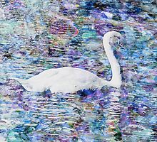 Subtle Swan by Michael Rubin