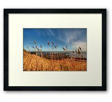 Whitby Coast Framed Print
