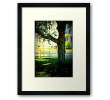 Spring swing Framed Print