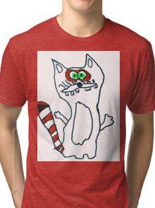 Mr Raccoon the Cool Cartoon Comic Friend Tri-blend T-Shirt