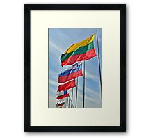 flags of European Union countries Framed Print