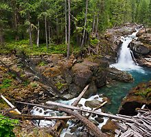 Silver Falls on the Ohanapecosh by Michael Russell