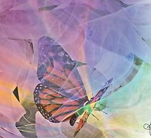 The Aura of a Butterfly by HopeDesigns