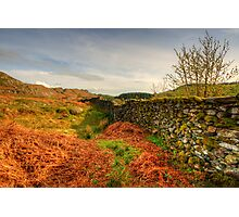 The Duddon Valley Photographic Print