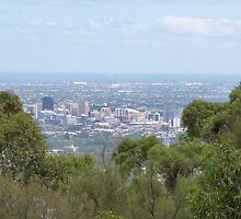 Adelaide City & Coastline after tropical deluge. From Mt. Osmond. S.A. by Rita Blom