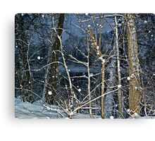 Trees By The River In A SnowStorm Canvas Print
