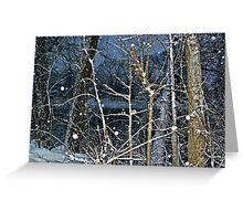 Trees By The River In A SnowStorm Greeting Card