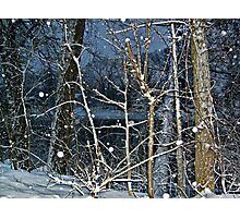 Trees By The River In A SnowStorm Photographic Print