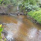 Upstream by AmandaWitt