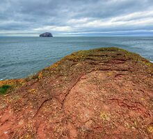 Bass Rock by English Landscape Prints