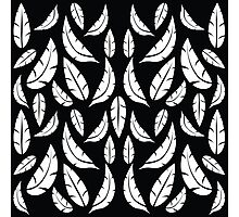 White on Black Modern Boho Tribal Graphic Feather Pattern Photographic Print