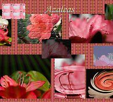 Azalea Collage by aprilann
