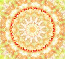 Sun Fire Mandala  by Vicki Field