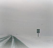 speed limit by Lynne Prestebak