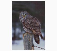 Piss Off! - Great Grey Owl Kids Tee