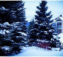 Winter Morning by Yannik Hay