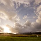 Snæfellsnes Pensinsula Sunset III by Natalie Broome