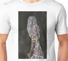 The Phantom - Great Grey Owl Unisex T-Shirt