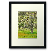 Wildflowers Under Oak Tree - Spring In Central California Framed Print