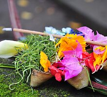 Balinese Offering by acarp10