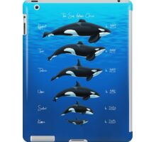The San Antonio Lineup iPad Case/Skin