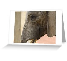 Elephant smiles Greeting Card