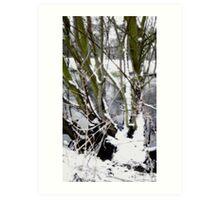 Snow Theme - Tree Views Art Print