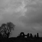 Newcastle Emlyn Castle by Neill Parker