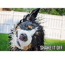 Shake it off. Photographic Print
