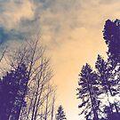Skylore by Larry  Stewart