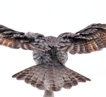 Wingspan - Great Grey Owl Sticker