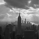 New York City Phone Case by novillust