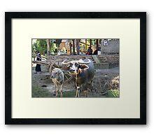 my animals Framed Print