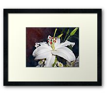 ©GS The White Flower IIA Framed Print