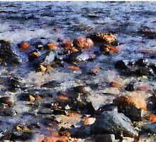Saltwater Mosaic by RC deWinter