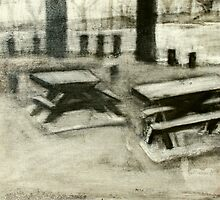 between the beach and river - picnic tables by donna malone