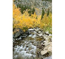 Fall Colors And Rushing Stream - Eastern Sierra Photographic Print
